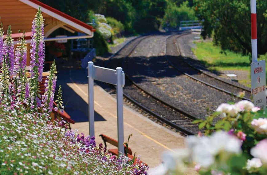Image source: http://tcof.com.au/events/diesel-train-rides-to-spring-bluff/